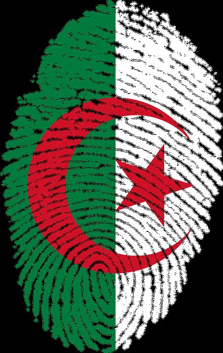 plantation arbres algérie
